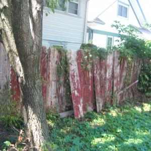 Old privacy fence